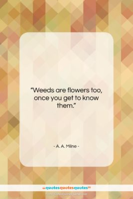 """A. A. Milne quote: """"Weeds are flowers too, once you get…""""- at QuotesQuotesQuotes.com"""