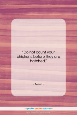"""Aesop quote: """"Do not count your chickens before they…""""- at QuotesQuotesQuotes.com"""