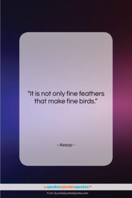 "Aesop quote: ""It is not only fine feathers that…""- at QuotesQuotesQuotes.com"