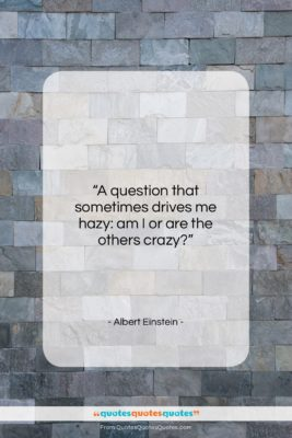 "Albert Einstein quote: ""A question that sometimes drives me hazy:…""- at QuotesQuotesQuotes.com"
