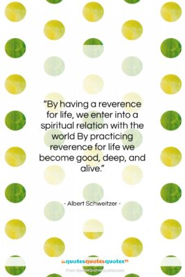 """Albert Schweitzer quote: """"By having a reverence for life, we…""""- at QuotesQuotesQuotes.com"""