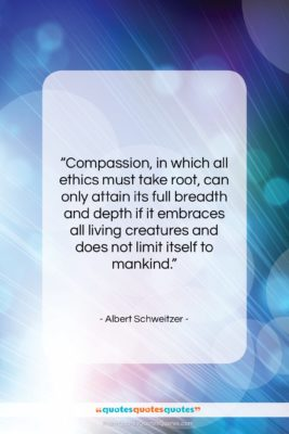 """Albert Schweitzer quote: """"Compassion, in which all ethics must take…""""- at QuotesQuotesQuotes.com"""