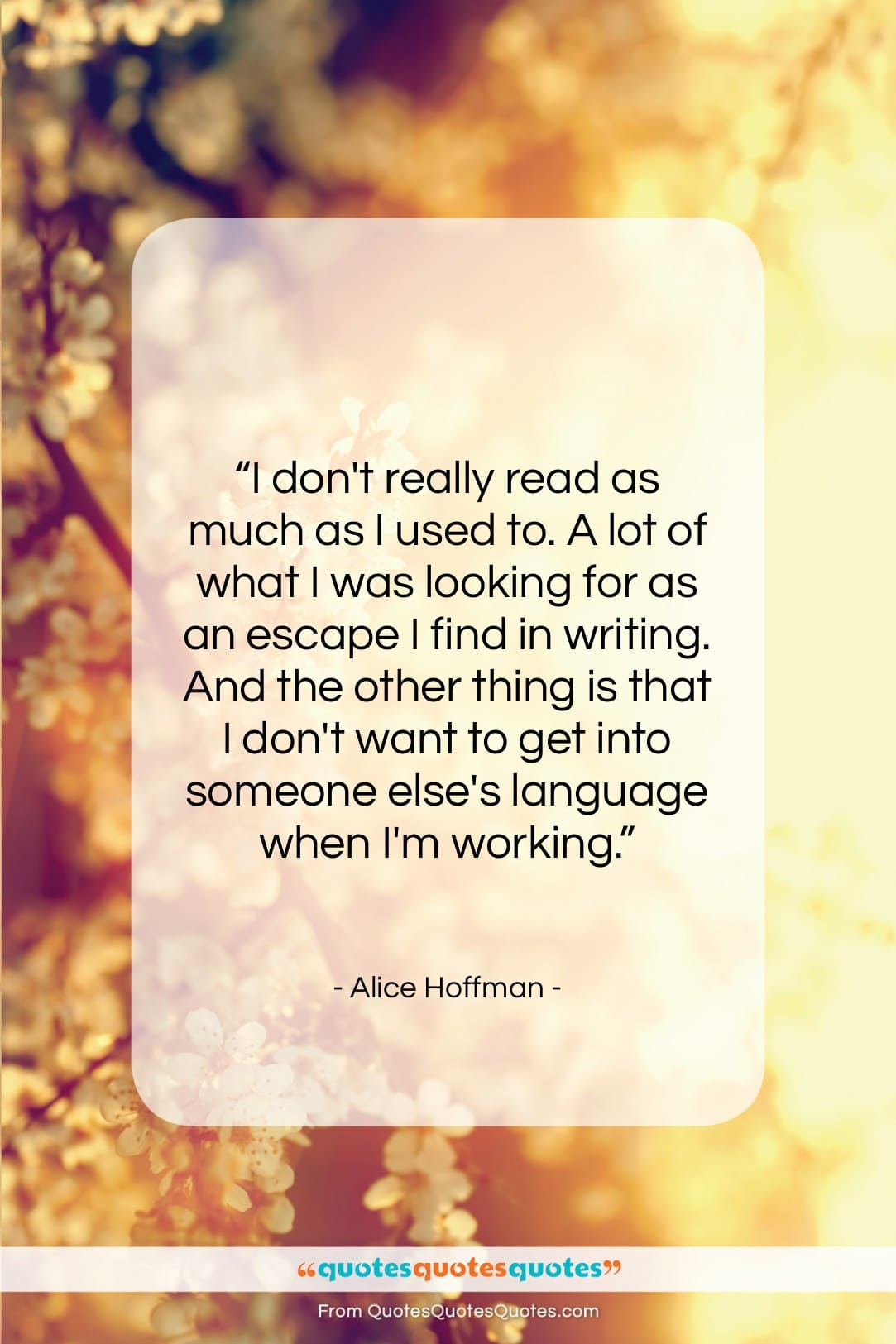 """Alice Hoffman quote: """"I don't really read as much as…""""- at QuotesQuotesQuotes.com"""