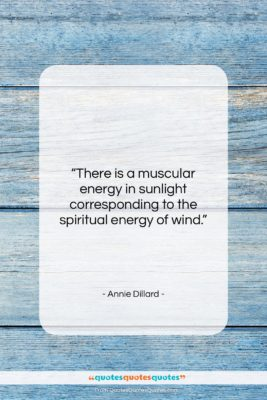 """Annie Dillard quote: """"There is a muscular energy in sunlight…""""- at QuotesQuotesQuotes.com"""