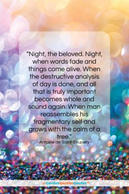"""Antoine de Saint-Exupery quote: """"Night, the beloved. Night, when words fade…""""- at QuotesQuotesQuotes.com"""