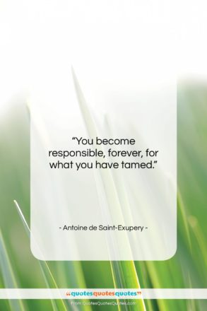 """Antoine de Saint-Exupery quote: """"You become responsible, forever, for what you…""""- at QuotesQuotesQuotes.com"""