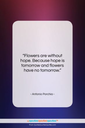 """Antonio Porchia quote: """"Flowers are without hope. Because hope is…""""- at QuotesQuotesQuotes.com"""