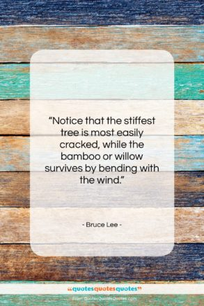 """Bruce Lee quote: """"Notice that the stiffest tree is most…""""- at QuotesQuotesQuotes.com"""