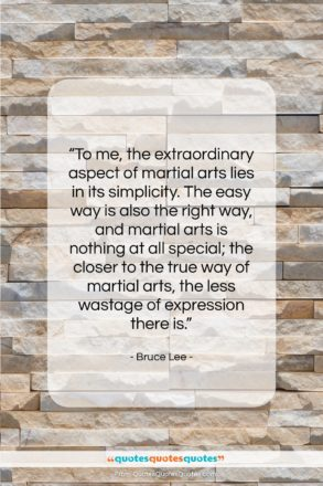 """Bruce Lee quote: """"To me, the extraordinary aspect of martial…""""- at QuotesQuotesQuotes.com"""