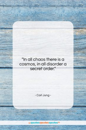 """Carl Jung quote: """"In all chaos there is a cosmos,…""""- at QuotesQuotesQuotes.com"""