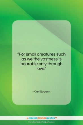 """Carl Sagan quote: """"For small creatures such as we the…""""- at QuotesQuotesQuotes.com"""