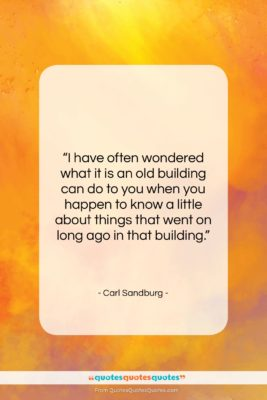 """Carl Sandburg quote: """"I have often wondered what it is…""""- at QuotesQuotesQuotes.com"""