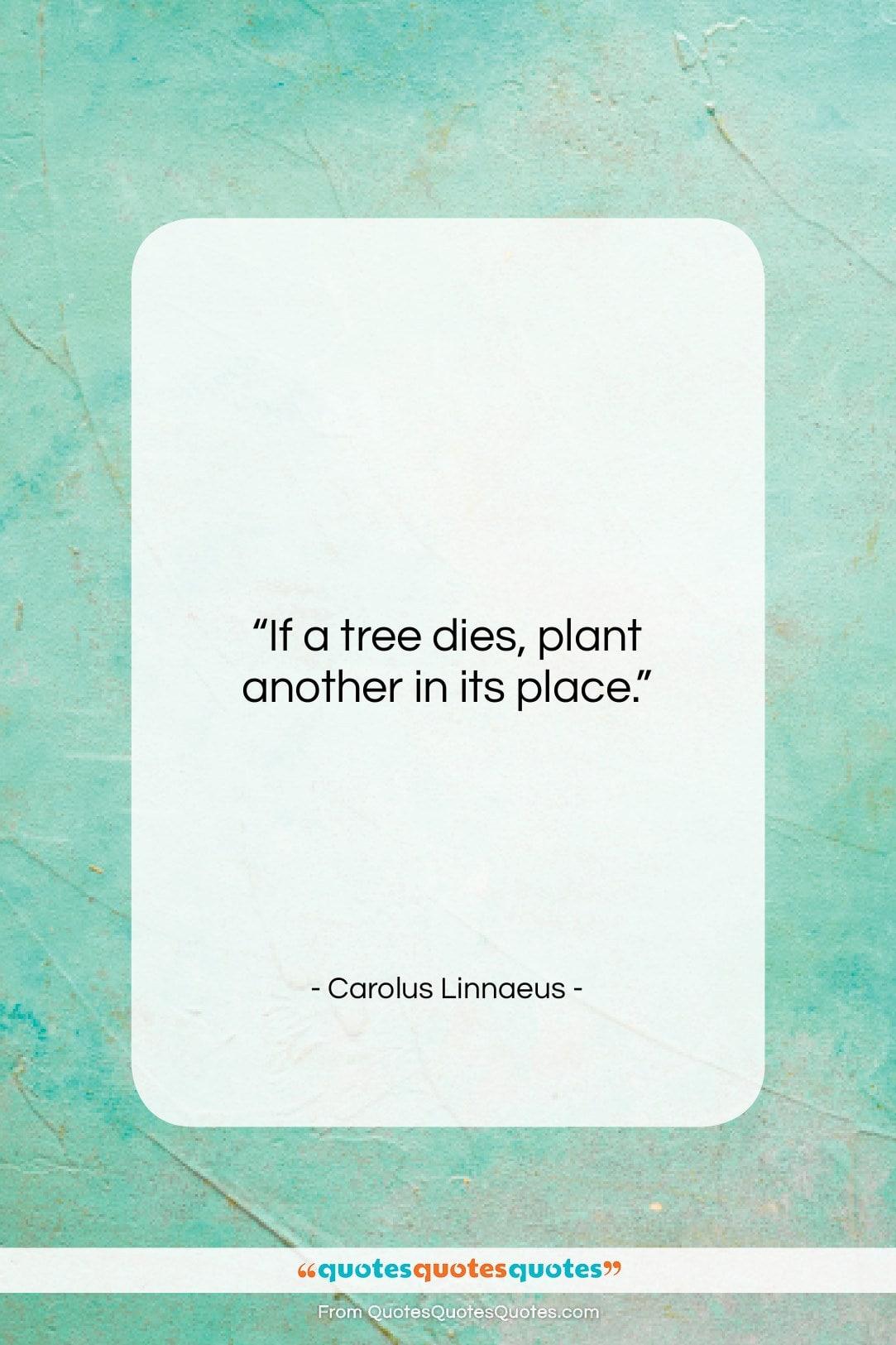 "Carolus Linnaeus quote: ""If a tree dies, plant another in…""- at QuotesQuotesQuotes.com"