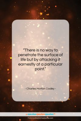 """Charles Horton Cooley quote: """"There is no way to penetrate the…""""- at QuotesQuotesQuotes.com"""