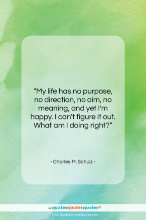 """Charles M. Schulz quote: """"My life has no purpose, no direction,…""""- at QuotesQuotesQuotes.com"""