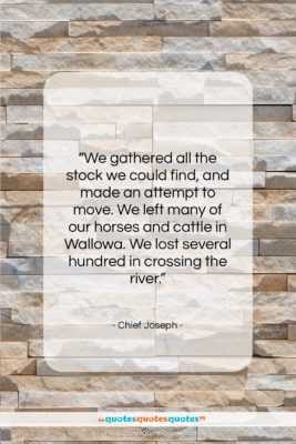 """Chief Joseph quote: """"We gathered all the stock we could…""""- at QuotesQuotesQuotes.com"""