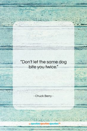 """Chuck Berry quote: """"Don't let the same dog bite you…""""- at QuotesQuotesQuotes.com"""