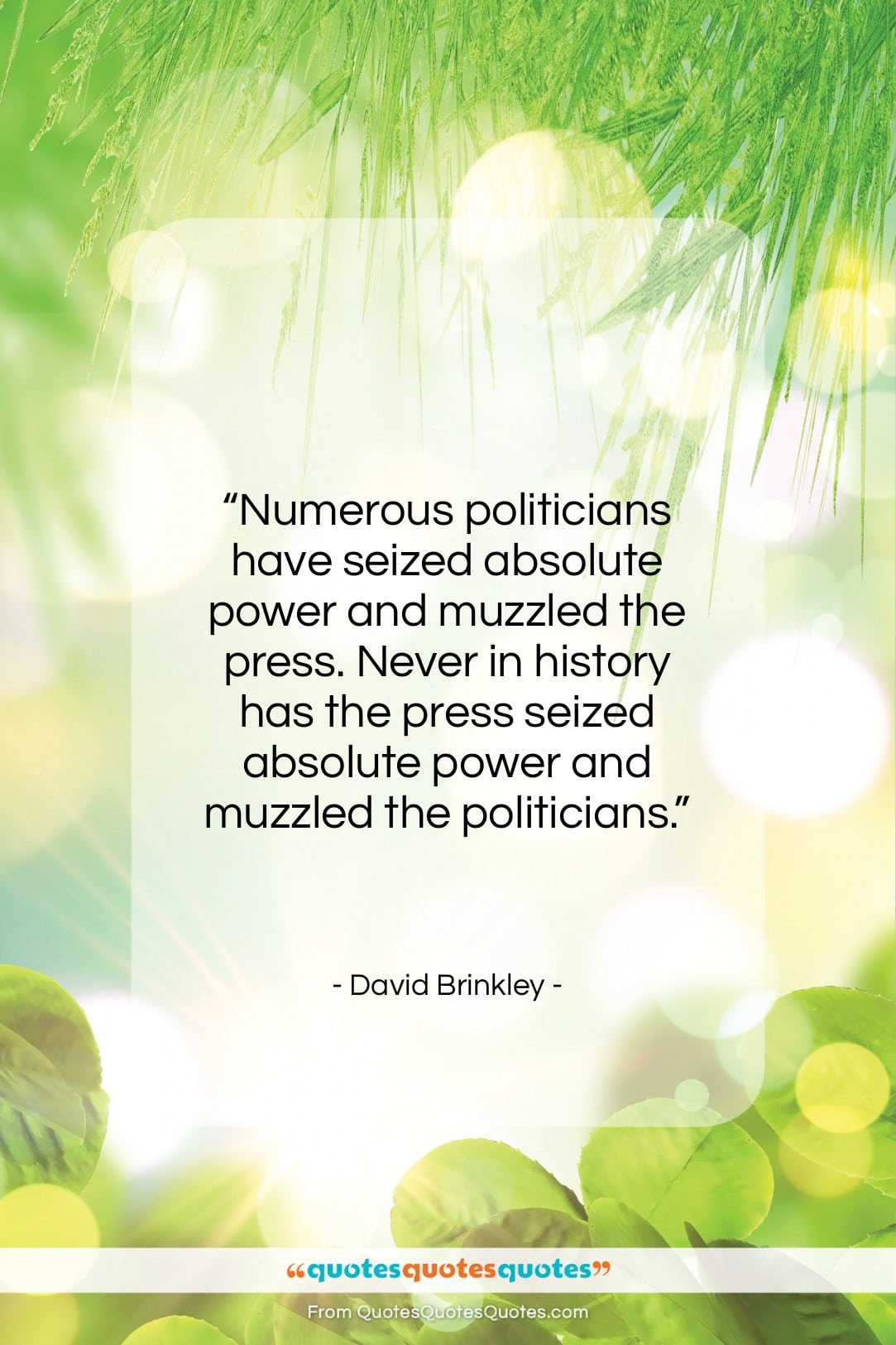 """David Brinkley quote: """"Numerous politicians have seized absolute power and…""""- at QuotesQuotesQuotes.com"""