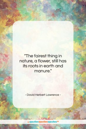 """David Herbert Lawrence quote: """"The fairest thing in nature, a flower,…""""- at QuotesQuotesQuotes.com"""