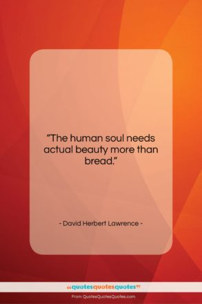 """David Herbert Lawrence quote: """"The human soul needs actual beauty more…""""- at QuotesQuotesQuotes.com"""
