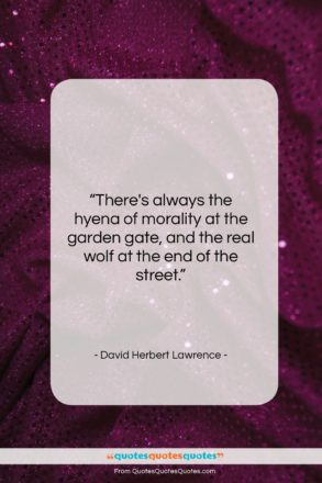 """David Herbert Lawrence quote: """"There's always the hyena of morality at…""""- at QuotesQuotesQuotes.com"""