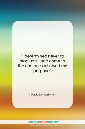 """David Livingstone quote: """"I determined never to stop until I…""""- at QuotesQuotesQuotes.com"""