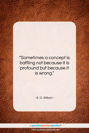 """E. O. Wilson quote: """"Sometimes a concept is baffling not because…""""- at QuotesQuotesQuotes.com"""