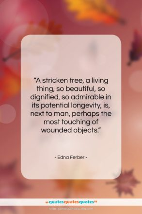 """Edna Ferber quote: """"A stricken tree, a living thing, so…""""- at QuotesQuotesQuotes.com"""
