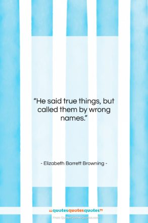 """Elizabeth Barrett Browning quote: """"He said true things, but called them…""""- at QuotesQuotesQuotes.com"""