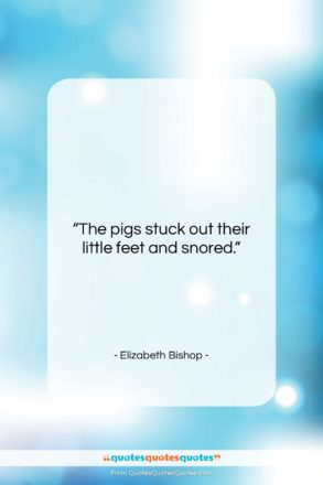 """Elizabeth Bishop quote: """"The pigs stuck out their little feet…""""- at QuotesQuotesQuotes.com"""