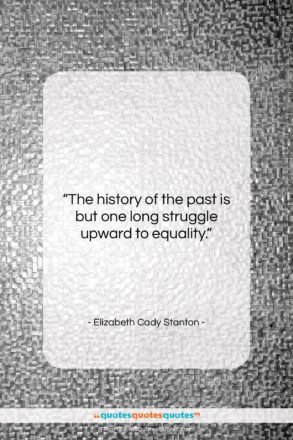 """Elizabeth Cady Stanton quote: """"The history of the past is but…""""- at QuotesQuotesQuotes.com"""