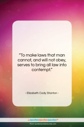 "Elizabeth Cady Stanton quote: ""To make laws that man cannot, and…""- at QuotesQuotesQuotes.com"