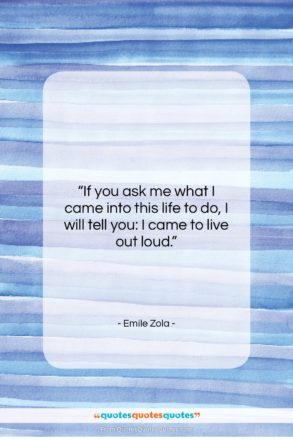 """Emile Zola quote: """"If you ask me what I came…""""- at QuotesQuotesQuotes.com"""