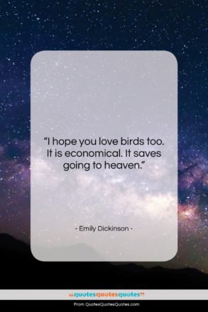 """Emily Dickinson quote: """"I hope you love birds too. It…""""- at QuotesQuotesQuotes.com"""