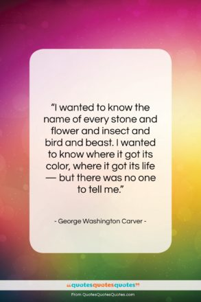 """George Washington Carver quote: """"I wanted to know the name of…""""- at QuotesQuotesQuotes.com"""