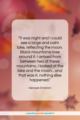 """Georges Simenon quote: """"It was night and I could see…""""- at QuotesQuotesQuotes.com"""