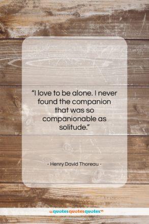 "Henry David Thoreau quote: ""I love to be alone. I never…""- at QuotesQuotesQuotes.com"
