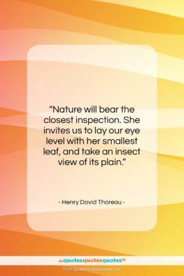 """Henry David Thoreau quote: """"Nature will bear the closest inspection. She…""""- at QuotesQuotesQuotes.com"""
