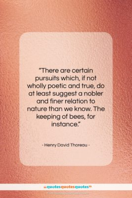 """Henry David Thoreau quote: """"There are certain pursuits which, if not…""""- at QuotesQuotesQuotes.com"""