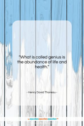 "Henry David Thoreau quote: ""What is called genius is the abundance…""- at QuotesQuotesQuotes.com"