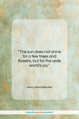 """Henry Ward Beecher quote: """"The sun does not shine for a…""""- at QuotesQuotesQuotes.com"""