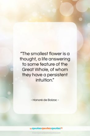 """Honoré de Balzac quote: """"The smallest flower is a thought, a…""""- at QuotesQuotesQuotes.com"""