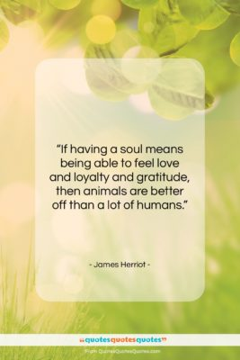 """James Herriot quote: """"If having a soul means being able…""""- at QuotesQuotesQuotes.com"""