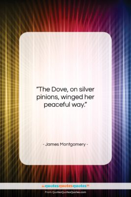 "James Montgomery quote: ""The Dove, on silver pinions, winged her…""- at QuotesQuotesQuotes.com"