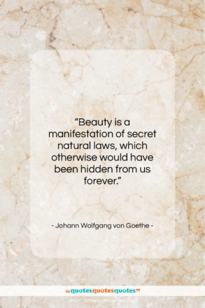 """Johann Wolfgang von Goethe quote: """"Beauty is a manifestation of secret natural…""""- at QuotesQuotesQuotes.com"""