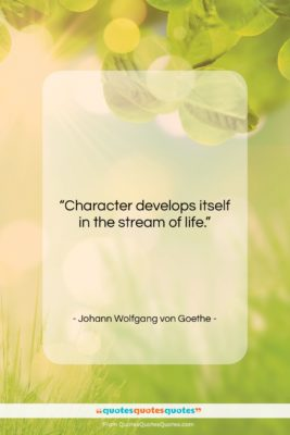 """Johann Wolfgang von Goethe quote: """"Character develops itself in the stream of…""""- at QuotesQuotesQuotes.com"""