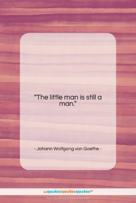"""Johann Wolfgang von Goethe quote: """"The little man is still a man….""""- at QuotesQuotesQuotes.com"""