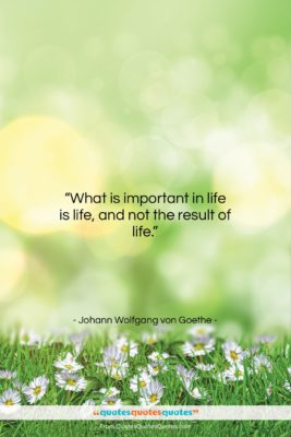 "Johann Wolfgang von Goethe quote: ""What is important in life is life,…""- at QuotesQuotesQuotes.com"