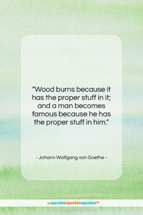 """Johann Wolfgang von Goethe quote: """"Wood burns because it has the proper…""""- at QuotesQuotesQuotes.com"""