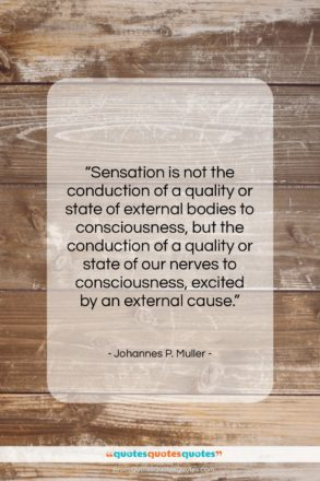 """Johannes P. Muller quote: """"Sensation is not the conduction of a…""""- at QuotesQuotesQuotes.com"""
